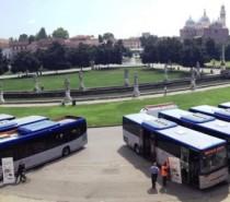 Diciassette nuovi mezzi per le linee gestite da Busitalia Veneto