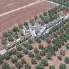 Scontro tra due treni Ferrotramviaria, numerose vittime