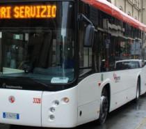 Nuovi bus ad Arezzo per ringiovanire la flotta Tiemme