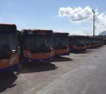 Nuovi bus a Palermo per la flotta Amat