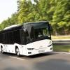 Solaris fornirà 300 nuovi bus al Cotral