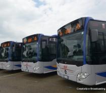 Trentuno nuovi bus per l'Ataf di Firenze