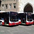 I nuovi MAN Lion's City di SETA per Piacenza - Foto SETA
