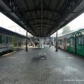 Flirt Etr350 Tper e Vivalto Trenitalia in sosta a Bologna Centrale - Foto FS Italiane