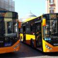 I nuovi bus Otokar per l'ANM di Napoli - Foto ANM